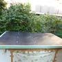 物置の屋根修理-AFTER04