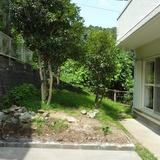 植木とブロックの撤去