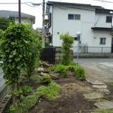 庭石の撤去作業