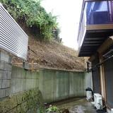 植木の伐採工事