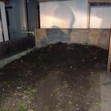 ユズの木の伐根と物置解体