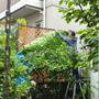 フェンスの飾り付け-BEFORE03