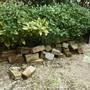 花壇の解体・レンガの回収-BEFORE02