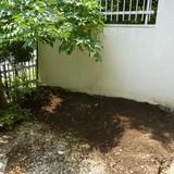 花壇の解体・レンガの回収