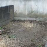 庭石の撤去処分