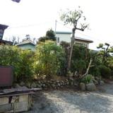 植木、垣根の剪定