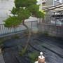 お庭の片付け-BEFORE02