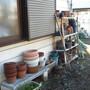 小屋、植木鉢の片付け-BEFORE03