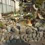 庭の中の片付け-BEFORE03