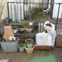 お庭の片付け-BEFORE04