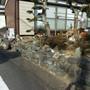 庭石・玉石の撤去-BEFORE02