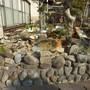 庭石・玉石の撤去-BEFORE03