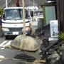 庭石・玉石の撤去-AFTER02