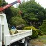 庭石の撤去作業-AFTER03