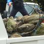 庭石の撤去作業-AFTER04