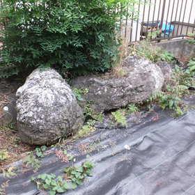 庭石の撤去処分-BEFORE01