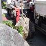 庭石の撤去-BEFORE02